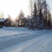 Зима на Селе :: Андрей .