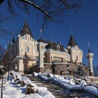 Зимний теремок :: Андрей Нибылица