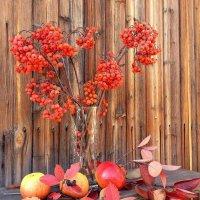 Осень :: Валентина Богатко