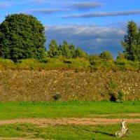 Анненские укрепления :: Светлана