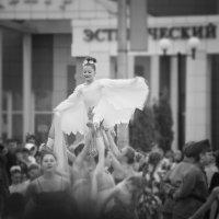Голубь мира (на праздновании 9 мая) :: Инна Голубицкая