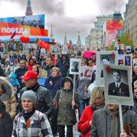 Праздник Победы! :: Алексей Михалев