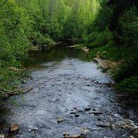 А у реки, а у реки... :: Андрей Кротов