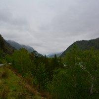 Непогода в долине Катуни. :: Валерий Медведев