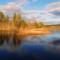 Как радует бегущая вода...... :: Павлова Татьяна Павлова