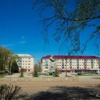 Вид на памятник :: Вячеслав Баширов