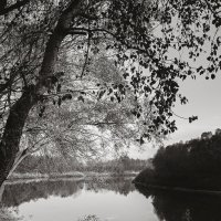 На берегу Десны. :: Андрий Майковский