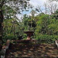 старый фонтан в старом парке :: Александр Корчемный