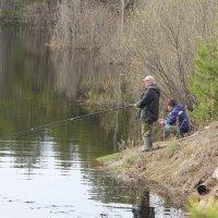 Рыбалка в мае... :: Александр Широнин