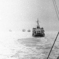 1972-й.Северный Морской путь. :: Иволий Щёголев