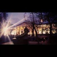 Ночной бульвар :: Виктория Нефедова