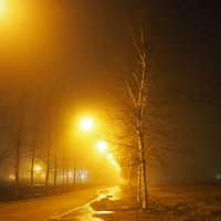 Ночной туман :: Софья Борисова