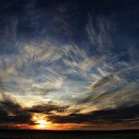 Над нами только небо... :: Виталий Павлов