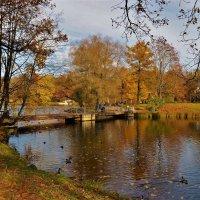 Осень у милого мостика... :: Sergey Gordoff