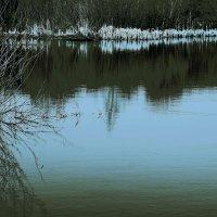 И  явь озёр зелено-голубых ... :: Валерия  Полещикова