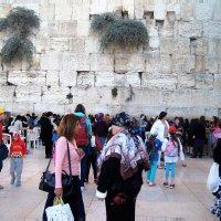 Иерусалим.Стена Плача.Женская половина. :: Лара ***