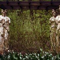 Нескучный Сад :: Мария Соколова