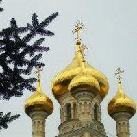 Купола собора Александра Невского в Ялте :: татьяна