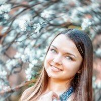 Яблоня в цвету :: Roman Sergeev