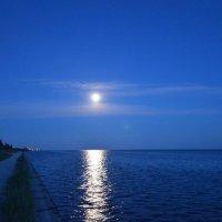 Лунная ночь над морем :: Александр Довгий