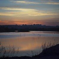 Вечер на теплых озерах :: Алиса Колмагорова