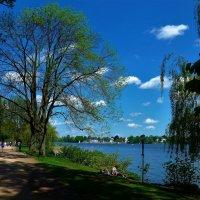 Тёплый воскресный день :: Nina Yudicheva