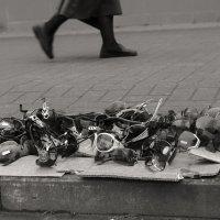 В ожидании лета :: Ирина Зайцева
