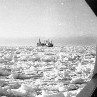 1972-й Арктика.Море Лаптевых :: Иволий Щёголев