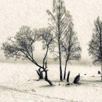 зимняя рыбалка... :: Владимир Матва