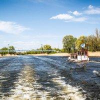 Прогулка по реке Цне................ :: Александр Селезнев