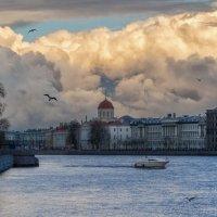 Весна в Питере :: Владимир Колесников