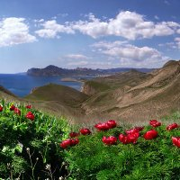 весна Киммерии :: viton