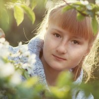 Все цветет :: Вера Сафонова