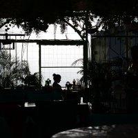 Свидание в зеленом ресторане :: Valeriy(Валерий) Сергиенко