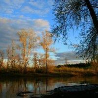 Река вернулась в берега ... :: Евгений Юрков
