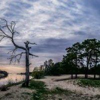 Где река Гауя встречается с морем. :: Lidija Abeltinja