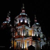 Вознесенский Кафедральный Собор в Алма-Ате. :: Anna Gornostayeva