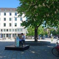 Майское утро в городе Аугсбург... :: Galina Dzubina