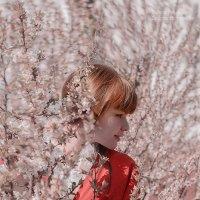 Весна. :: Татьяна Полянская