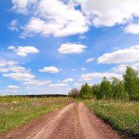 Колеся по майским дорогам.. :: Андрей Заломленков