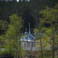Церковь в обрамлении весенней листвы :: Наталья Покацкая
