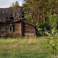 Старый домик в Лучках :: Сергей