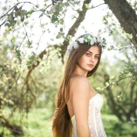 Яблоневый сад :: Валентина Батурина
