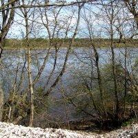 У реки Нарва :: veera (veerra)