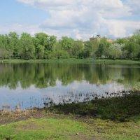 Головинские пруды в середине мая :: Дмитрий Никитин