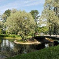 Один из интерьеров парка. Санкт-Петербург :: Валерий Подорожный
