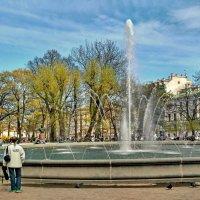 Александровский сад :: Олег Попков