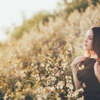 Закат в саду :: Оксана Савельева