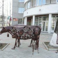 Корова - кормилица :: Виктор