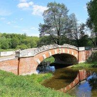 Горбатый мостик :: Ирина Шурлапова